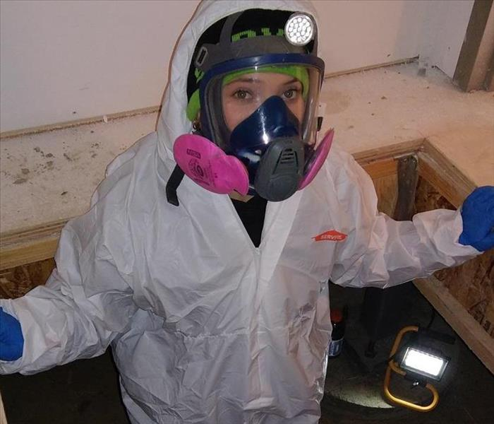 Mold Remediation in Douglas, WY