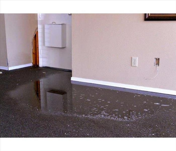 Water damage carpet cleaning, with a puddle of water.