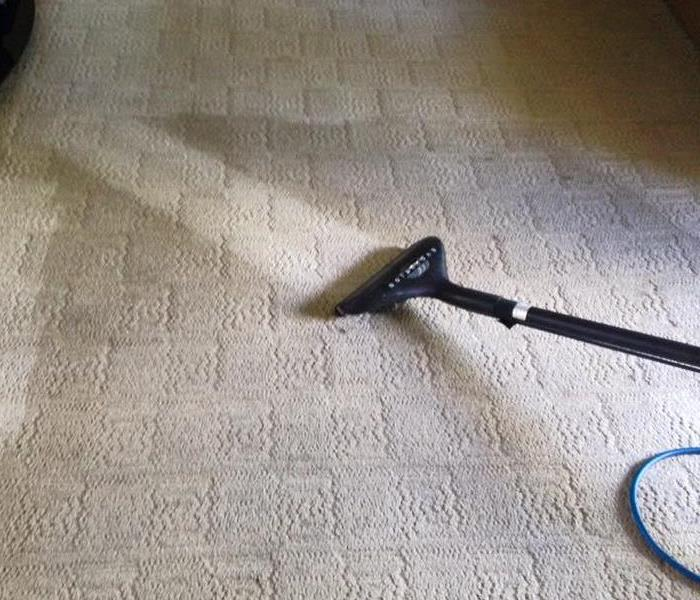 General Carpet Cleaning in Casper, WY
