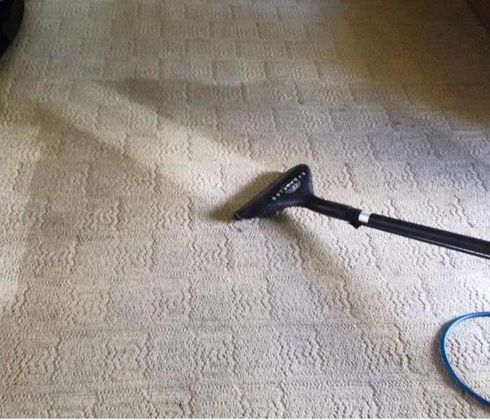 General Carpet Maintenance